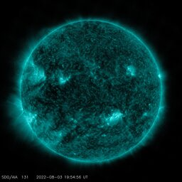 Latest image from SDO AIA 131A