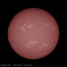 Latest image from SDO AIA 1700A